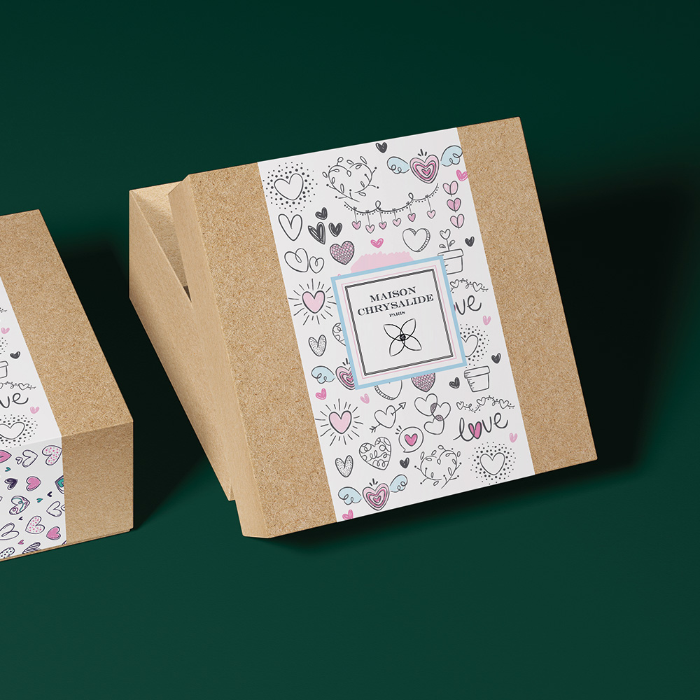 afec boite carton ecoresponsable maison chrysalide